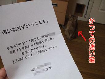 2010_05210024.jpg