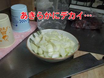 2010_05230049.jpg