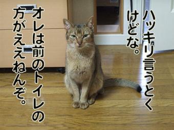 maenohouga.jpg
