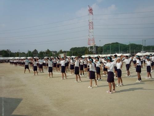 中学運動会 (2)