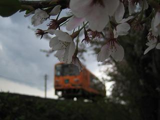 2010.0507十川駅 (7)