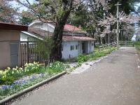 2010.0511芦野公園