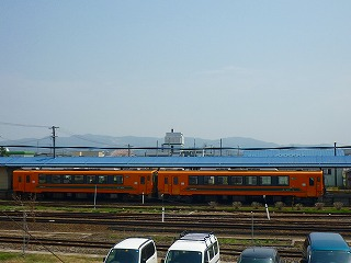 P1050177.jpg