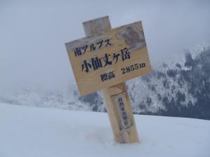 20110430-1.jpg