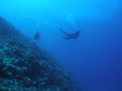 チービシ諸島ファンダイビング
