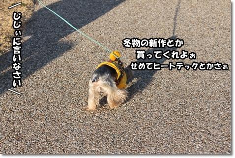 IMG_5342.jpg