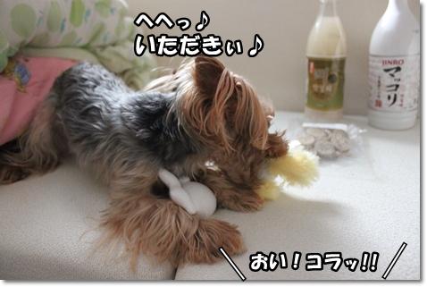 IMG_5568.jpg