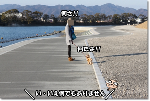 IMG_5631.jpg