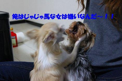 s-IMG_0355.jpg