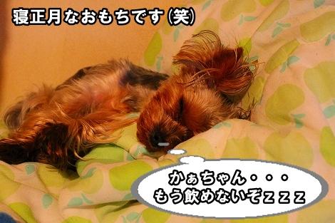 s-IMG_0987.jpg