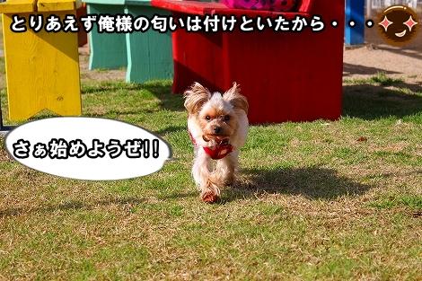 s-IMG_1087.jpg