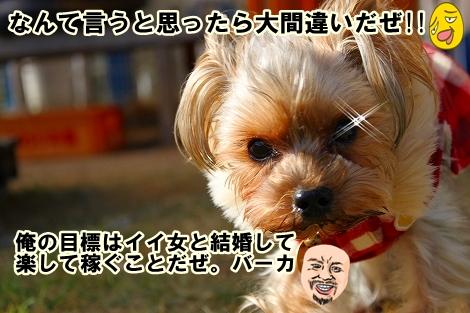 s-IMG_1118.jpg