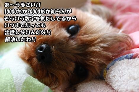 s-IMG_1494.jpg