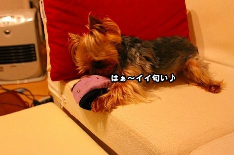 s-IMG_2288.jpg
