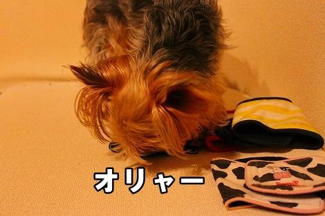 s-IMG_2289.jpg
