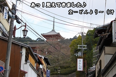 s-IMG_2470.jpg
