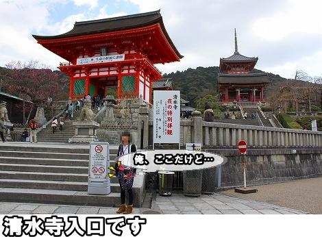 s-IMG_2471.jpg