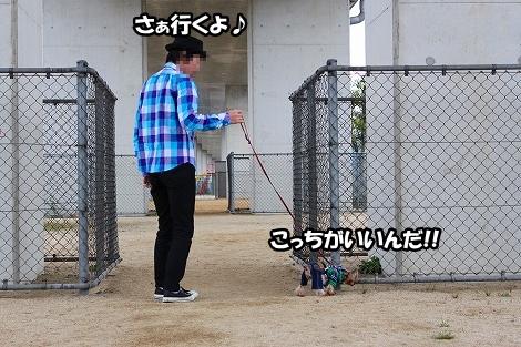 s-IMG_2692.jpg