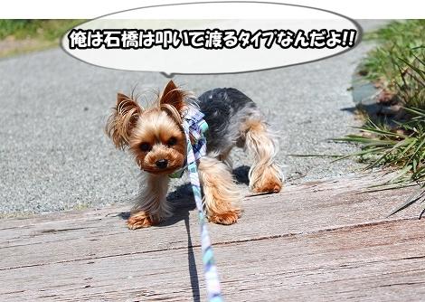 s-IMG_2924.jpg