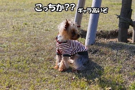 s-IMG_3139.jpg