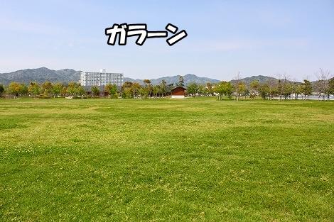 s-IMG_3446.jpg