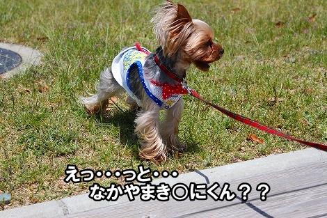 s-IMG_3649.jpg