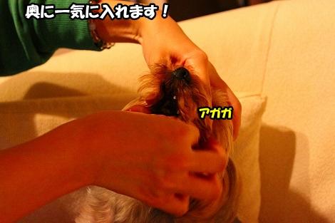 s-IMG_3938.jpg