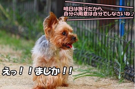 s-IMG_4502.jpg