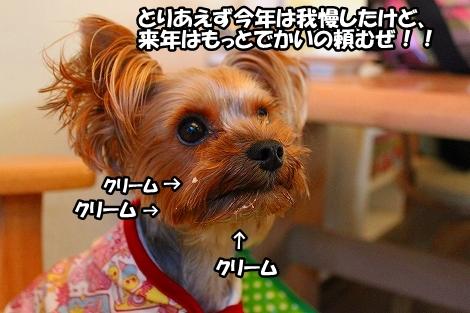 s-IMG_4523.jpg