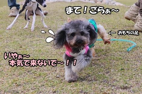 s-IMG_4847.jpg