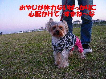 s-P1020957.jpg