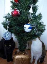 2009christmas1.jpg