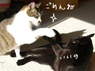 akushu091215_1.jpg