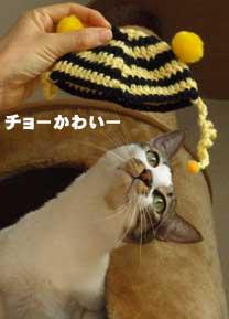 ne_san091226_2.jpg