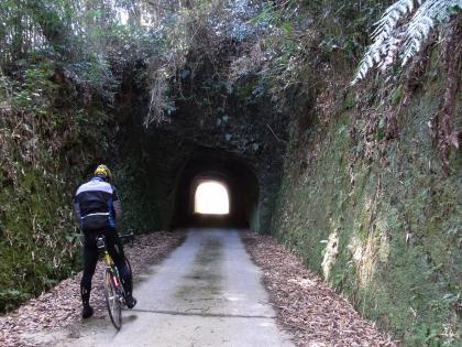 畑林道 トンネル1