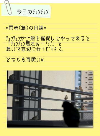 0_20101008230748.jpg