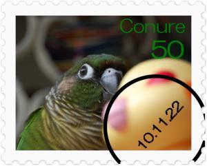 [stamp22073056]DSC_1685