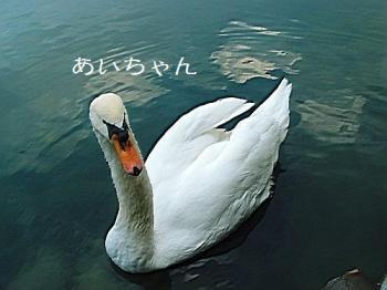 DSC06279.jpg
