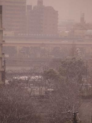 20100218雪景色