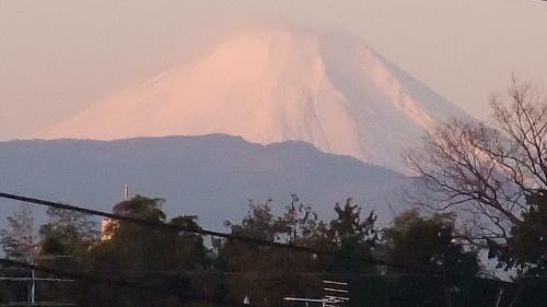 2010 1.1 富士山