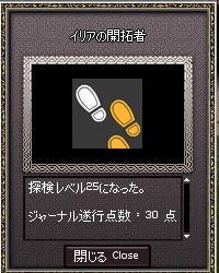 mabinogi_2010_02_17_001.jpg