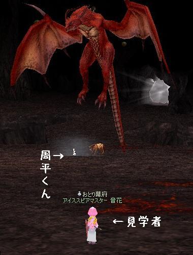mabinogi_2010_06_26_005.jpg