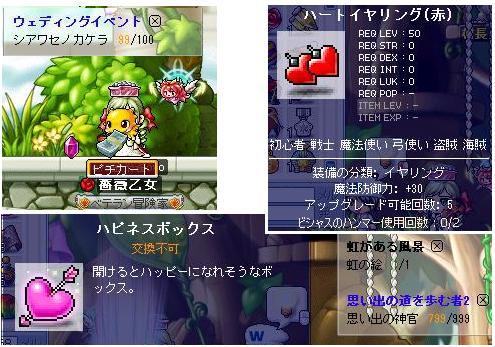 Maple_100531_022608 ハピネスボックス