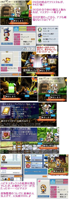 Maple_100629_202508 アナ
