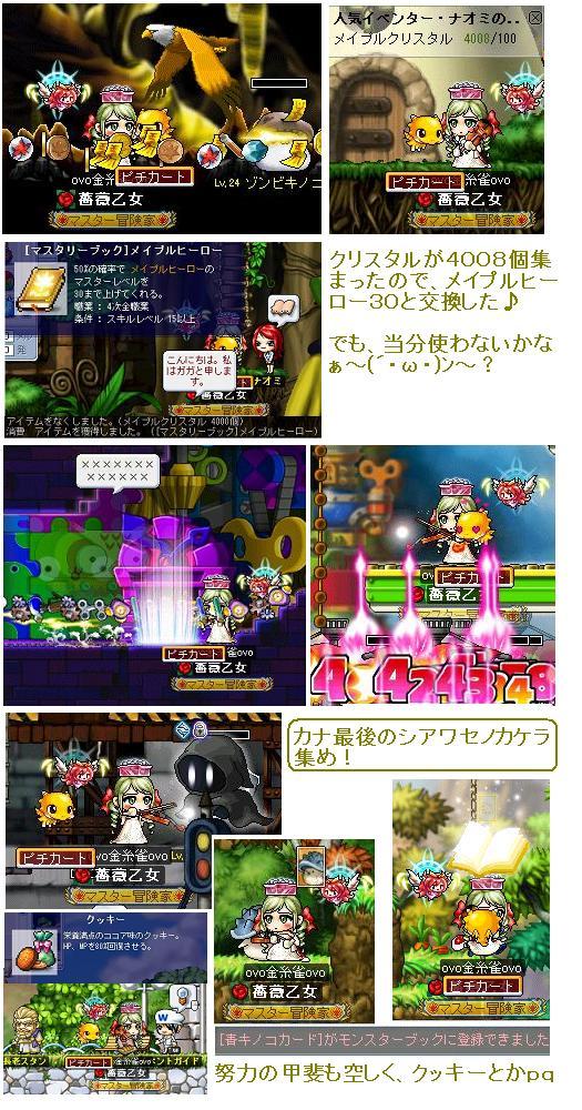 Maple_100629_170415 カナ