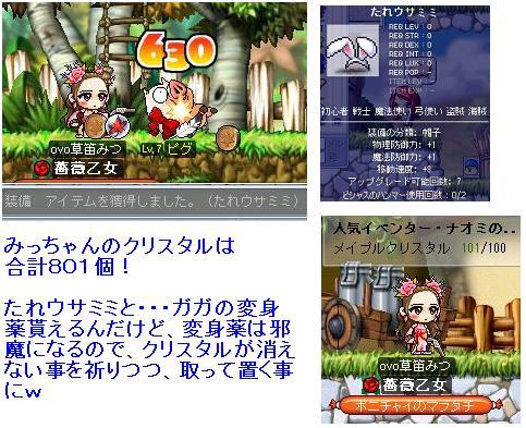 Maple_100629_162535 みっちゃん