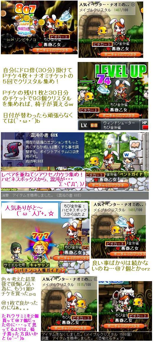 Maple_100629_225605 ちびカナ