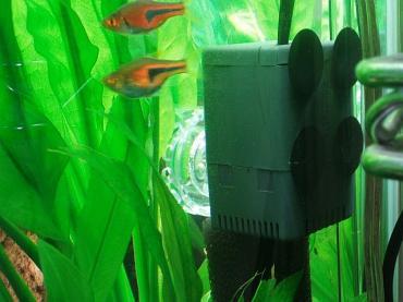 水中ポンプ再設置02