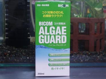 アルジガード