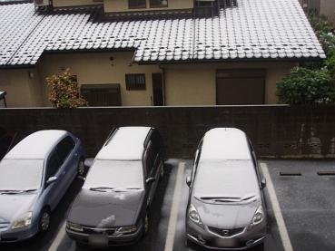 4月の雪01